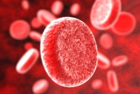 Что такое группа крови?