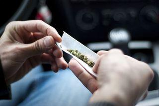 Даже редкое употребление  марихуаны необратимо меняет мозг