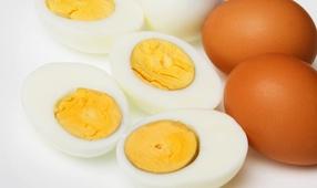 Яйца – польза или вред?