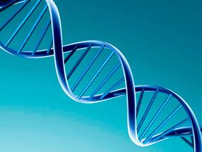 Найдена молекула, помогающая сопротивляться размножению рака