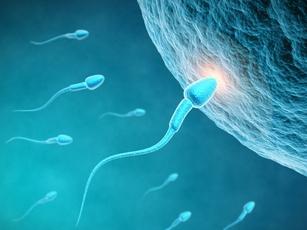 Стресс влияет на качество спермы