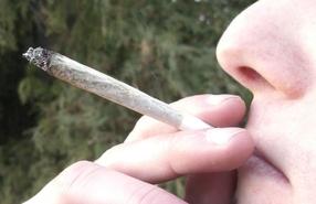 Вредно ли курить анашу?